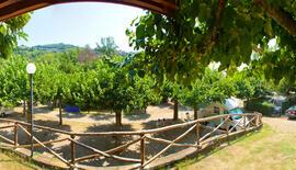 Villaggio Turistico Pian dei Boschi